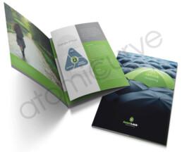 6 page brochure design concept