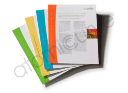 1 page brochure design series