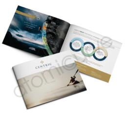 Financial Wealth Brochure Design