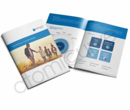 Custom Brochure for Financial Advisor